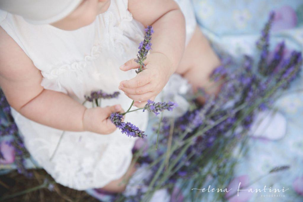 Elena Fantini Fotografa ritratti bambini campi di lavanda